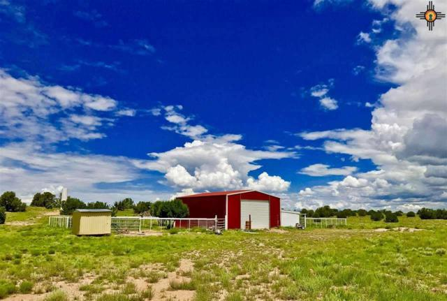53 Walkabout Rd., Fence Lake, NM 87315 (MLS #20185482) :: Rafter Cross Realty