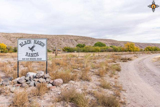 648 San Miguel, Truth Or Consequences, NM 88350 (MLS #20185609) :: Rafter Cross Realty