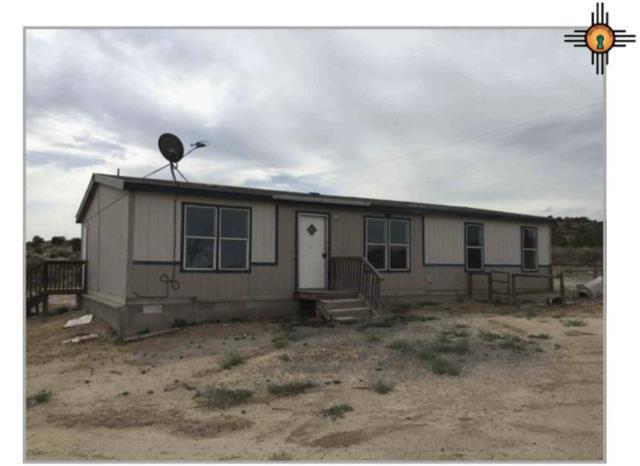 954 County Road 4990, Aztec, NM 87413 (MLS #20185623) :: Rafter Cross Realty