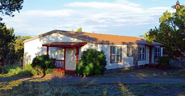 151 Ridge Top Circle, PIE TOWN, NM 87827 (MLS #20190050) :: Rafter Cross Realty