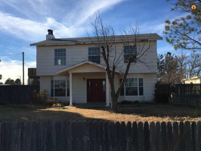 4201 Taos, Carlsbad, NM 88220 (MLS #20190103) :: Rafter Cross Realty