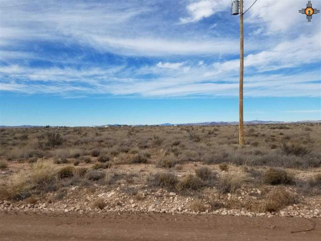 XXXXX Butterfield Trail Nw, Deming, NM 88030 (MLS #20190130) :: Rafter Cross Realty