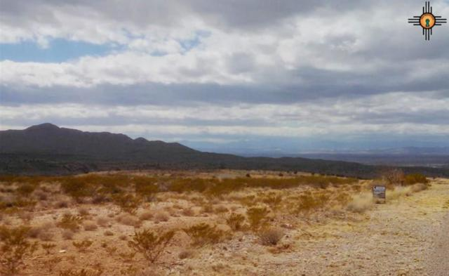 45 Rancho Del Lago, Truth Or Consequences, NM 87901 (MLS #20190161) :: Rafter Cross Realty