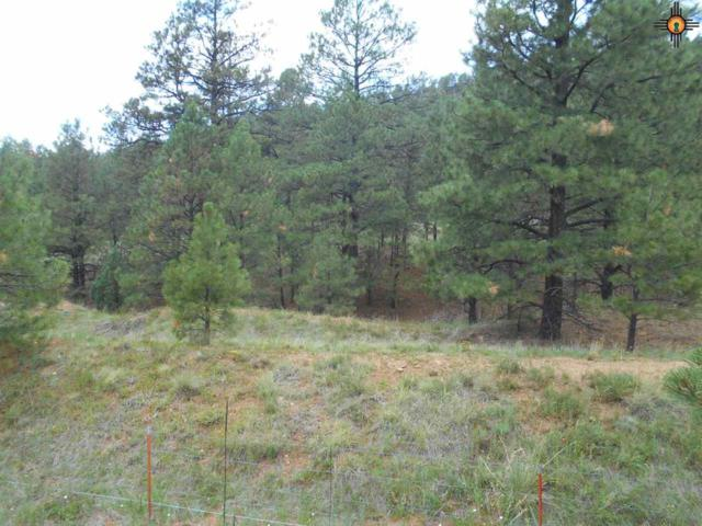 TRACK A 22 518 HWY, Sapello, NM 87001 (MLS #20190212) :: Rafter Cross Realty