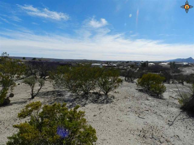 107 idaho Ct, Elephant Butte, NM 87935 (MLS #20190316) :: Rafter Cross Realty