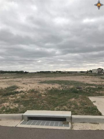 602 N York, Artesia, NM 88210 (MLS #20190319) :: Rafter Cross Realty