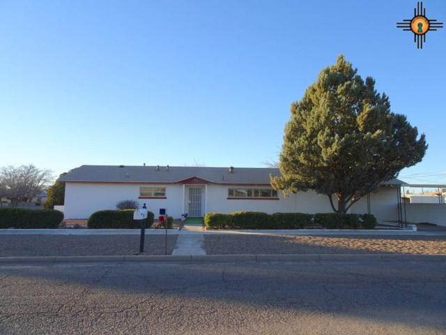 1100 S Silver, Deming, NM 88030 (MLS #20190364) :: Rafter Cross Realty