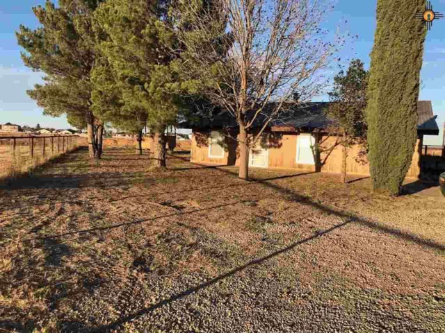 406 E Elgin Road, Carlsbad, NM 88220 (MLS #20190368) :: Rafter Cross Realty