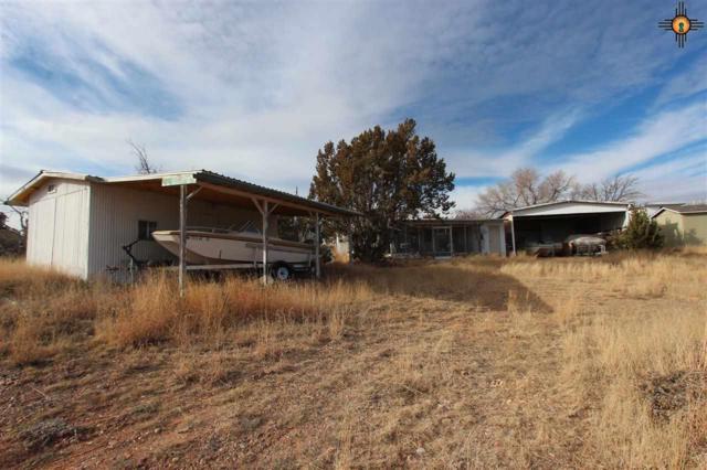 50 Mulberry Lane, Fort Sumner, NM 88119 (MLS #20190379) :: Rafter Cross Realty