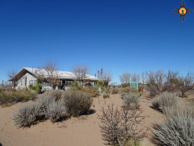 9135 Cactus Garden Road Sw, Deming, NM 88030 (MLS #20190380) :: Rafter Cross Realty