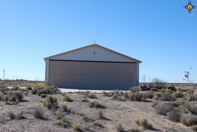 Cheyenne, Akela, NM 88030 (MLS #20190441) :: Rafter Cross Realty