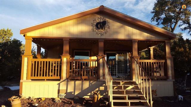 29 Logan Lane, Quemado, NM 87829 (MLS #20190496) :: Rafter Cross Realty