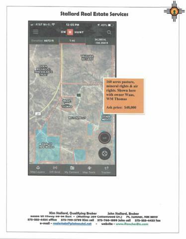 Cibola Rd, Fort Sumner, NM 88119 (MLS #20190509) :: Rafter Cross Realty