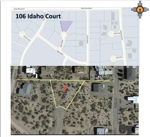 106 Idaho Ct, Elephant Butte, NM 87935 (MLS #20190519) :: Rafter Cross Realty