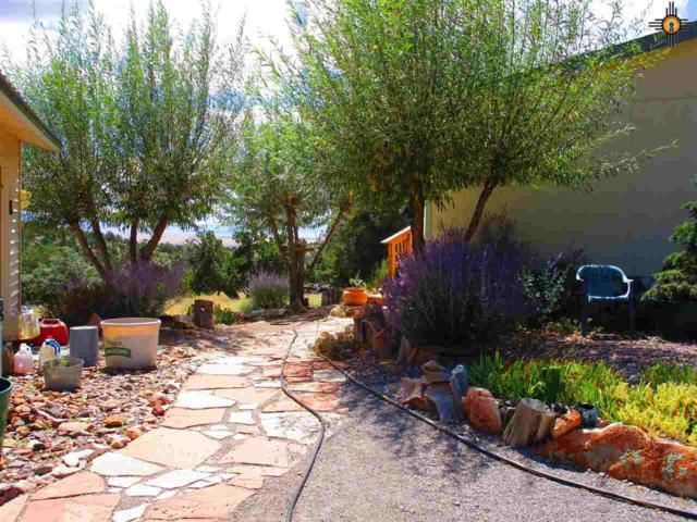 264 Agua Fria Trail, Datil, NM 87821 (MLS #20190522) :: Rafter Cross Realty