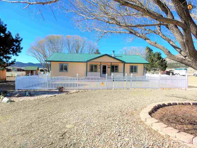 17 Dillon Creek Rd, Raton, NM 87740 (MLS #20190542) :: Rafter Cross Realty