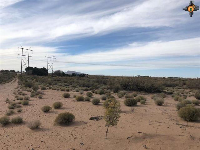 0000 Sands Rd Nw, Deming, NM 88030 (MLS #20190587) :: Rafter Cross Realty