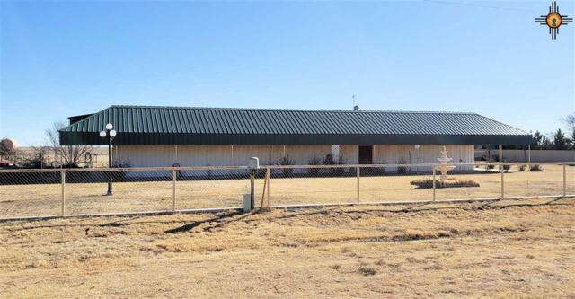 1415 Sr 311, Clovis, NM 88101 (MLS #20190609) :: Rafter Cross Realty