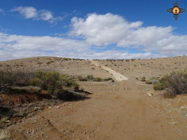 00 Camino Tres Se, Deming, NM 88030 (MLS #20190620) :: Rafter Cross Realty