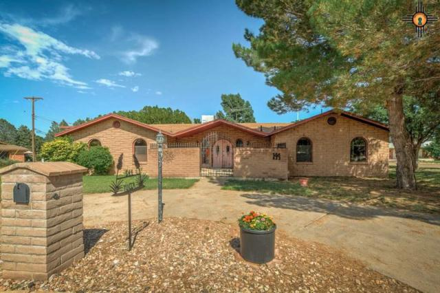 144 Yucca Dr, Portales, NM 88130 (MLS #20190682) :: Rafter Cross Realty