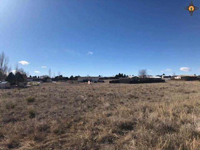 wishbone Circle, Raton, NM 87740 (MLS #20190690) :: Rafter Cross Realty