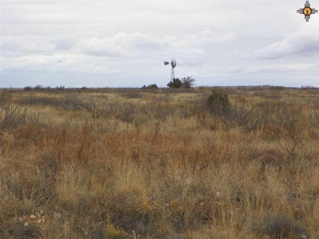 0 River Ranches Road, Fort Sumner, NM 88119 (MLS #20190704) :: Rafter Cross Realty