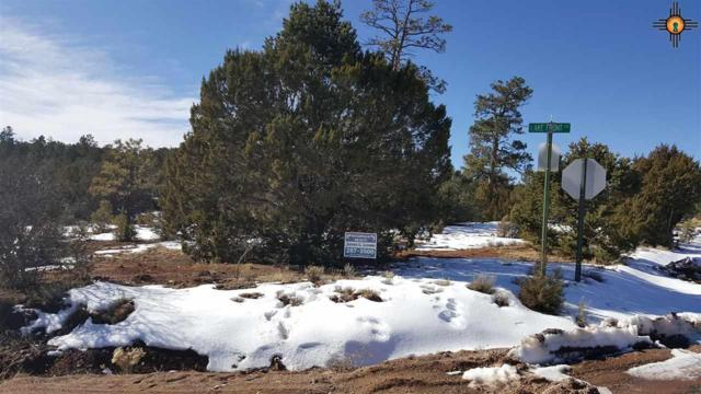 Cod Rd, Thoreau, NM 87323 (MLS #20190714) :: Rafter Cross Realty