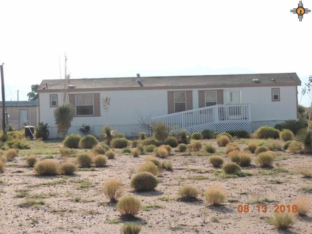 10295 Majestic View, Deming, NM 88030 (MLS #20190775) :: Rafter Cross Realty
