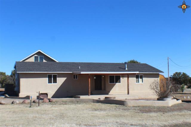 29 Morales Road, Silver City, NM 88061 (MLS #20190786) :: Rafter Cross Realty