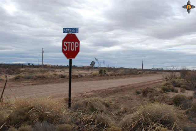 El Bordo, Deming, NM 88030 (MLS #20190799) :: Rafter Cross Realty