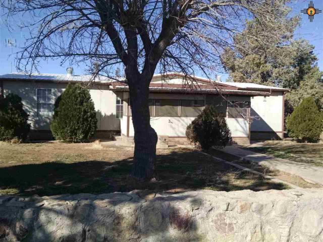 570 NE Arrowhead Dr, Deming, NM 88030 (MLS #20190800) :: Rafter Cross Realty