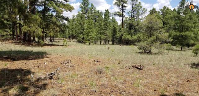 Tbd Chain Of Craters Rd., Grants, NM 87020 (MLS #20190889) :: Rafter Cross Realty