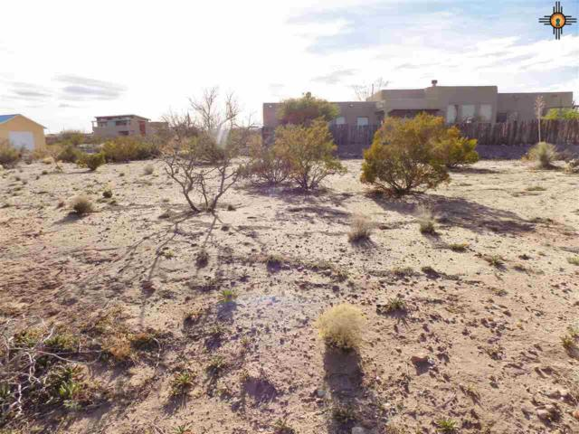 806 Hawthorne, Elephant Butte, NM 87935 (MLS #20190974) :: Rafter Cross Realty