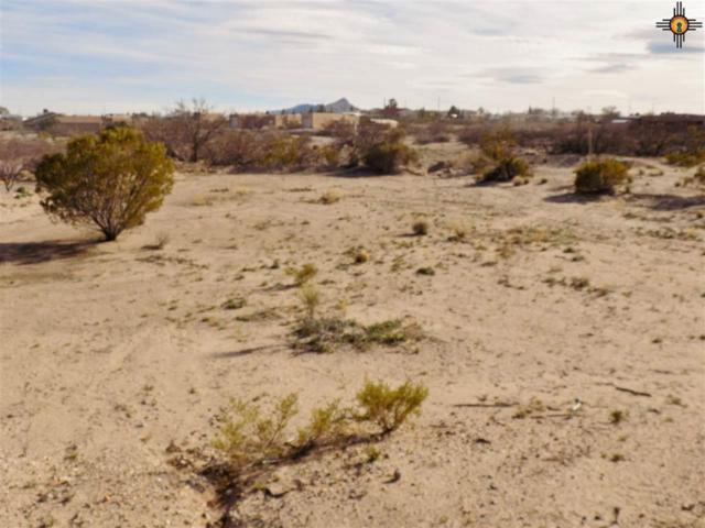 804 Hawthorne, Elephant Butte, NM 87935 (MLS #20190976) :: Rafter Cross Realty