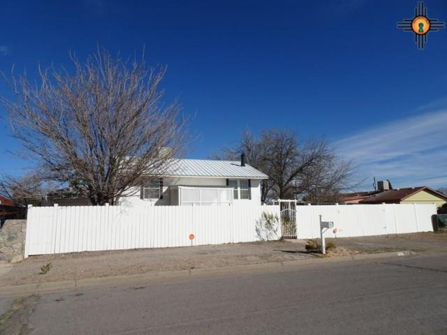 711 S 10th Street, Deming, NM 88030 (MLS #20190977) :: Rafter Cross Realty