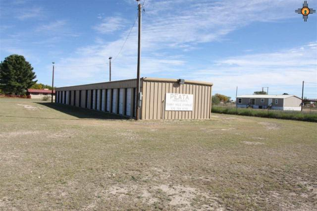 1300 E Harrison Street, Lovington, NM 88260 (MLS #20190982) :: Rafter Cross Realty