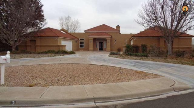 3 Desert Rose, Roswell, NM 88201 (MLS #20190993) :: Rafter Cross Realty