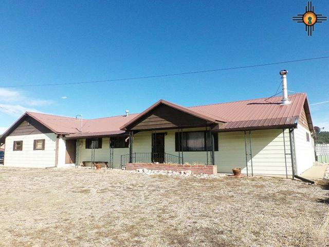 329 County Road A011, Ledoux, NM 87732 (MLS #20191022) :: Rafter Cross Realty