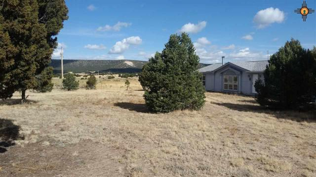 60 Castle Rock Park Drive, Quemado, NM 87829 (MLS #20191109) :: Rafter Cross Realty