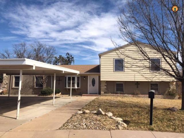 1624 N Bucknell Ct., Hobbs, NM 88240 (MLS #20191132) :: Rafter Cross Realty