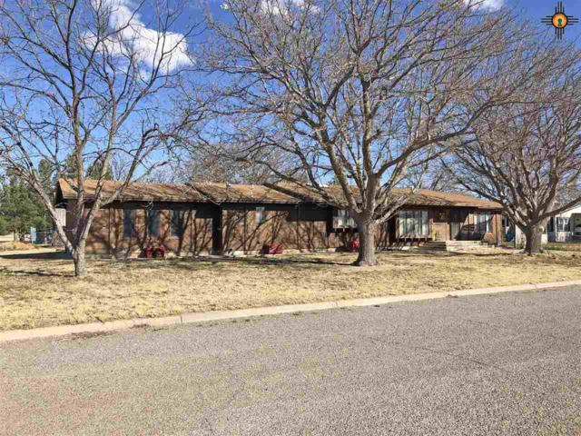 506 S Bridges, Tatum, NM 88267 (MLS #20191156) :: Rafter Cross Realty