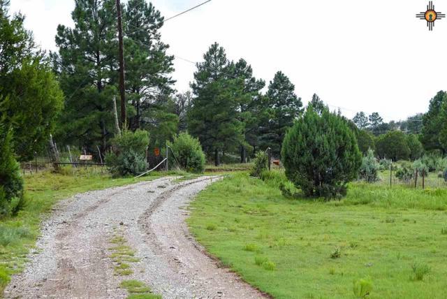 1592 Highway 24, Pinon, NM 88344 (MLS #20191170) :: Rafter Cross Realty