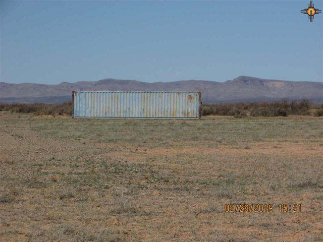 18595 Coyote Rd., Se, Deming, NM 88030 (MLS #20191187) :: Rafter Cross Realty