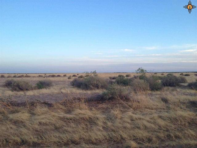 0000 San Juan/ Enchanted View Rd, Deming, NM 88030 (MLS #20191206) :: Rafter Cross Realty