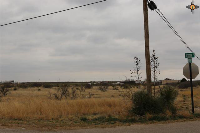 38 Apache Drive, Carlsbad, NM 88220 (MLS #20191255) :: Rafter Cross Realty