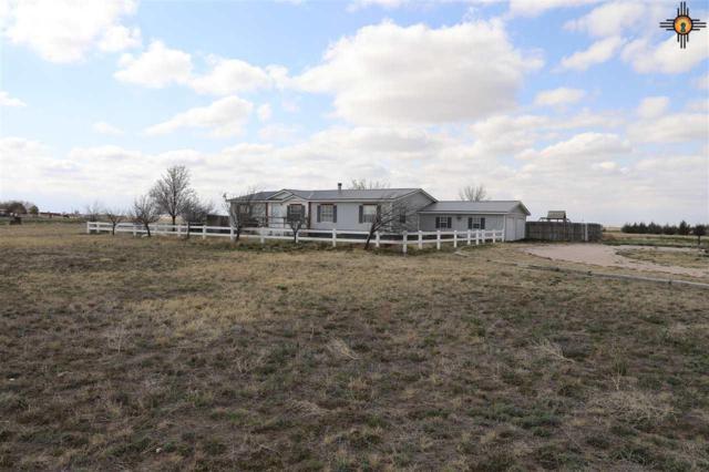 14113 N Wagon Wheel Drive, Hobbs, NM 88242 (MLS #20191262) :: Rafter Cross Realty
