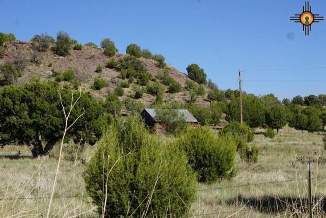 MM 88.5 Hwy 84, Las Vegas, NM 87701 (MLS #20191266) :: Rafter Cross Realty