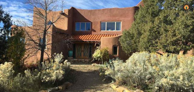 202 County Rd B-028, Cleveland, NM 87715 (MLS #20191270) :: Rafter Cross Realty