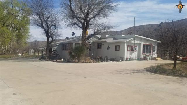 352 Animas Creek Rd, Caballo, NM 87931 (MLS #20191273) :: Rafter Cross Realty
