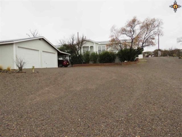 514 Pike Rd, Elephant Butte, NM 87935 (MLS #20191334) :: Rafter Cross Realty